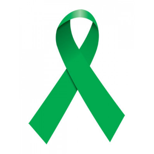 Green Ribbon Temporary Tattoo