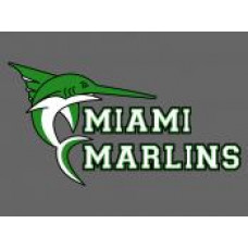 "Miami School ""Marlins"" Temporary Tattoo"