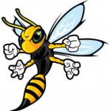"""Tec Voc High School """"Hornets"""" Temporary Tattoo"""