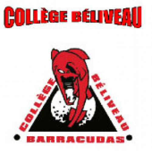 "College Beliveau ""College Beliveau Barracudas"" Temporary Tattoo"