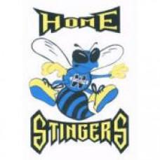 "Wanipigow School ""Stingers"" Temporary Tattoo"