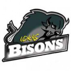 "Neil Dennis Kematch Memorial School ""Bisons"" Temporary Tattoo"