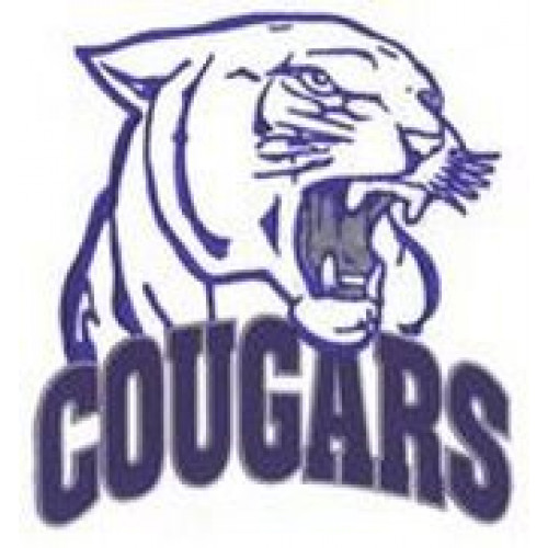 "Carman Collegiate ""Carman Cougars"" Temporary Tattoo"