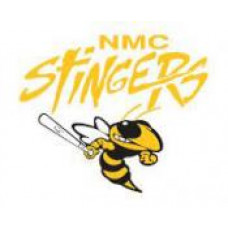 "Nellie McClung Collegiate ""Stingers"" Temporary Tattoo"