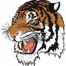 "Treherne Collegiate ""Tigers"" Temporary Tattoo"
