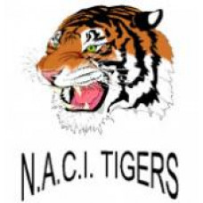 "Neepawa Area Collegiate ""Tigers"" Temporary Tattoo"
