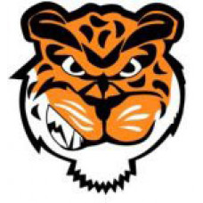 "Swan Valley Regional Secondary ""Tigers"" Temporary Tattoo"