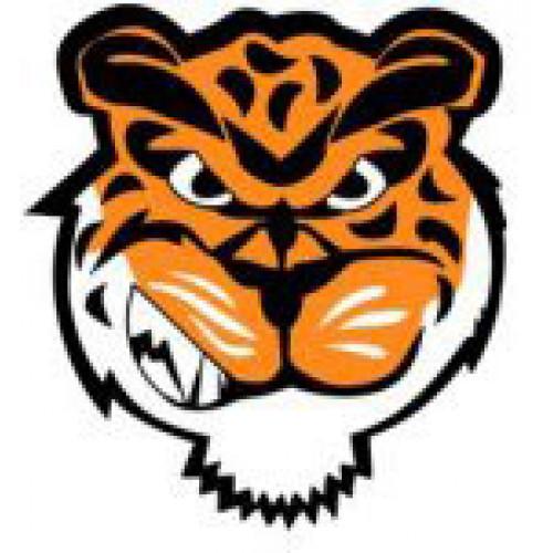 "Swan Valley Regional Secondary ""Tigers"" Temporary Tattoo"