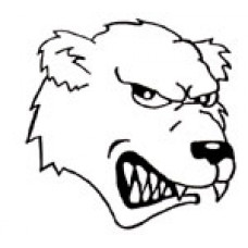 "Virden Collegiate ""Bears"" Temporary Tattoo"