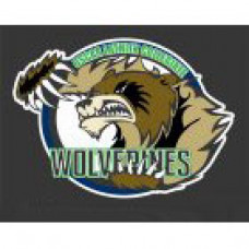 "Oscar Lathin Collegiate ""Wolverines"" Temporary Tattoo"