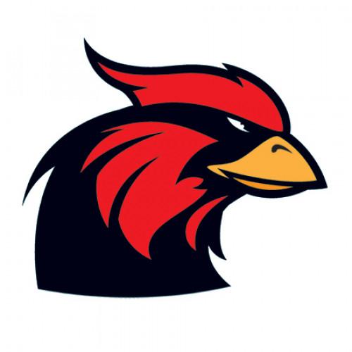 Large Cardinal Mascot Temporary Tattoo
