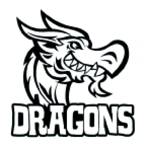Dragons Mascot Temporary Tattoo