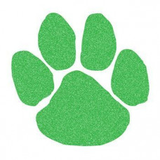 Green Glitter Paw Print Temporary Tattoo