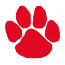 Red Paw Print Temporary Tattoo